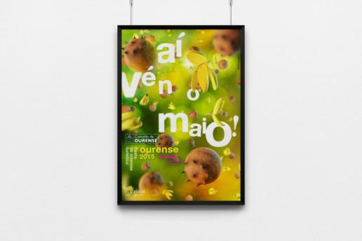 diseño de cartel campaña Maios 2015 Ourense